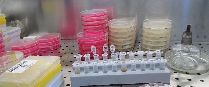 bakterie w wodzie i dezynfekcja za pomocą lampy UV